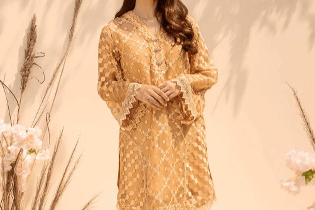 Simple Stylish Eid Dresses